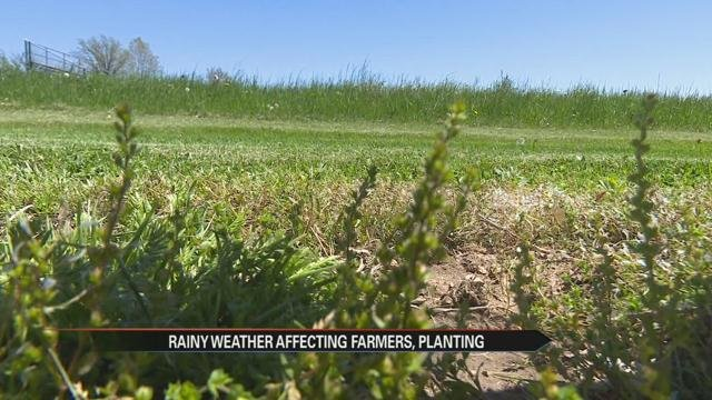 Dry weather helps Minnesota farmers catch up on planting
