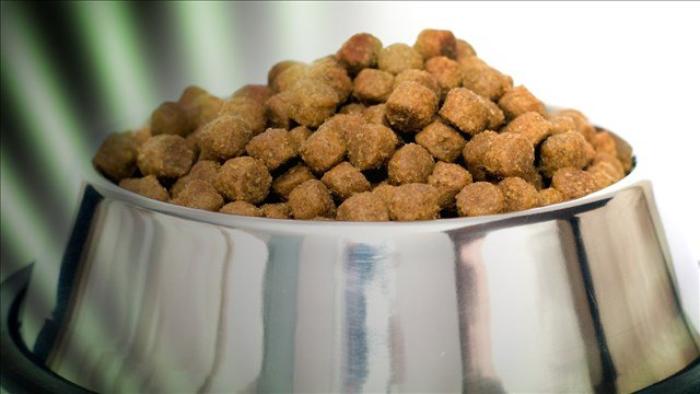 Blue Wilderness Dog Food Recall Abc57 News See The Difference